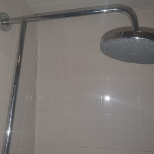 Plumber Montpelier shower head in bathroom